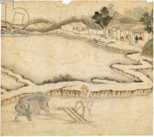 Ploughing the paddy field, from 'Gengzhi tu' (Pictures of Tilling and Weaving) (w/c on paper)