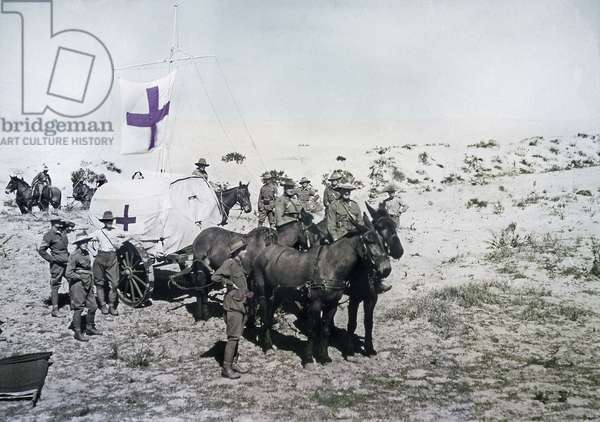 An Australian Light Horse Brigade Field Ambulance wagon during the war against the Ottoman Empire, Palestine 1918 (colour Paget plate)