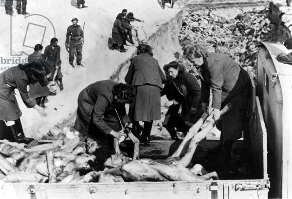 A mass grave dug after the camp had been turned over to the Allied 21st Army Group, Bergen-Belsen concentration camp, April 1945 (b/w photo)