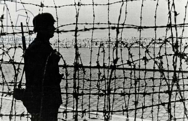 A German is on guard duty behind barbed wire defenses on the coast, Normandy, France, 1944 (b/w photo)