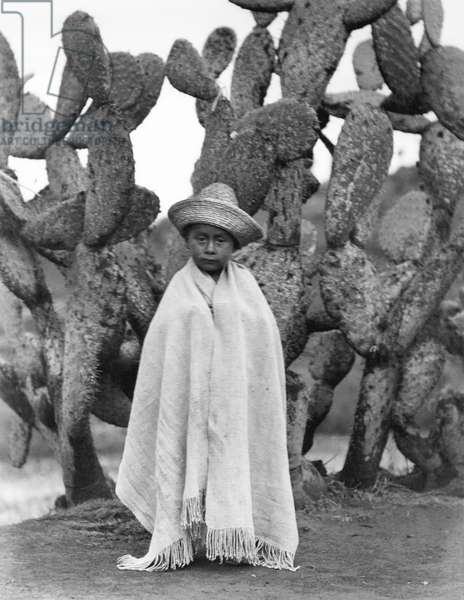 Boy in Front of a Cactus, State of Veracruz, Mexico, 1927 (bw photo)