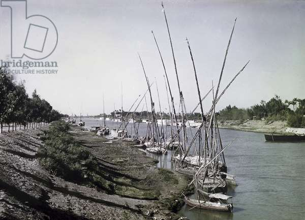 Egyptian Feluccas (boats) on the river during the war against the Ottoman Empire, Palestine, 1918 (colour Paget plate)