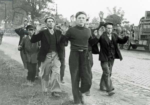 Several civilian prisoners of war, with arms raised, walk along a road during the German invasion of Poland, September 1939 (b/w photo)