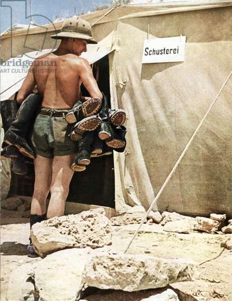 German Afrika Corps, 1942 (photo)