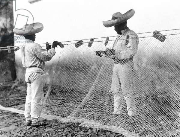 Fishermen with Nets, Mexico, c.1926 (b/w photo)