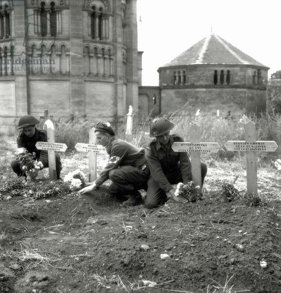 Three soldiers of the 23rd Field Ambulance of the 3rd Canadian Infantry Division place flowers on graves, Saint Georges de Basly, Normandy, France, June 1944 (b/w photo)