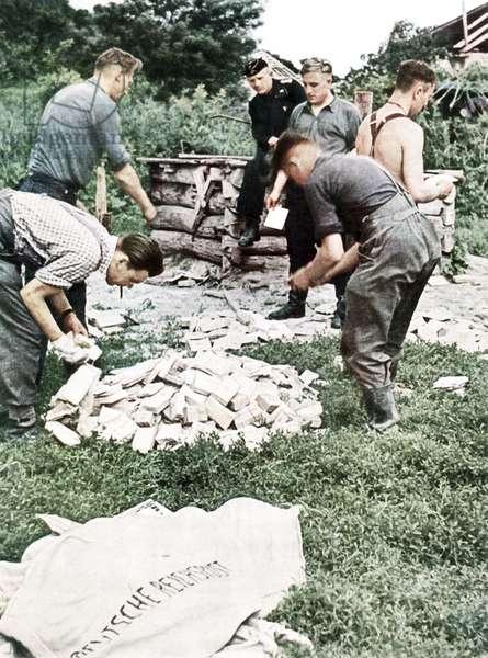 Operation Barbarossa, 1942 (photo)