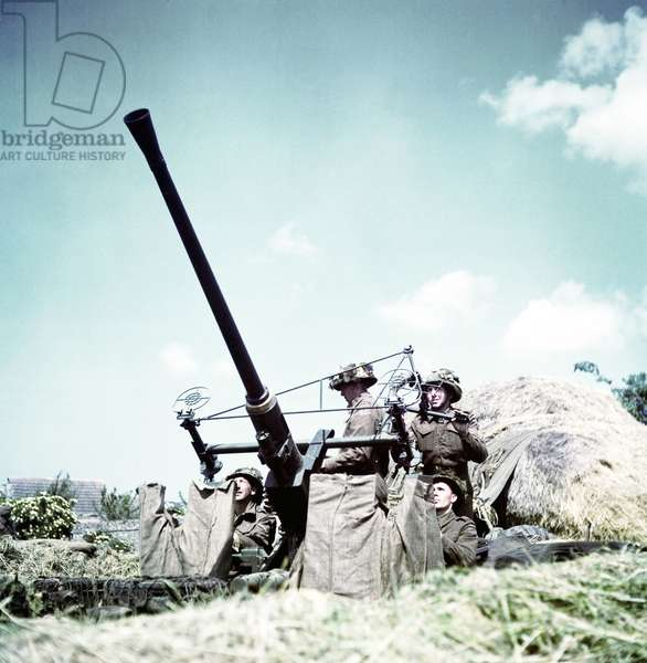 Soldiers of the 3rd Canadian Infantry Division have set up an anti-aircraft Bofors 40mm/L60 with the British-designed Stiffkey Sight, 6th June 1944 (photo)