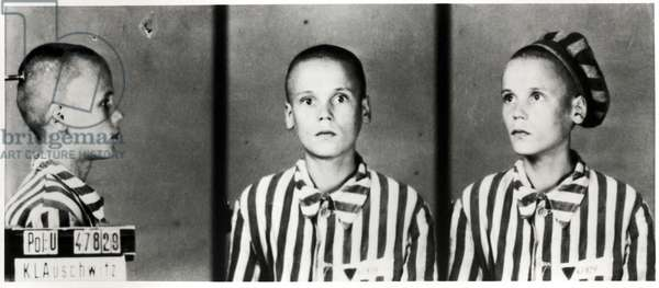 Mugshot of prisoner 57846 - a Hungarian boy, 1942 (b/w photo)