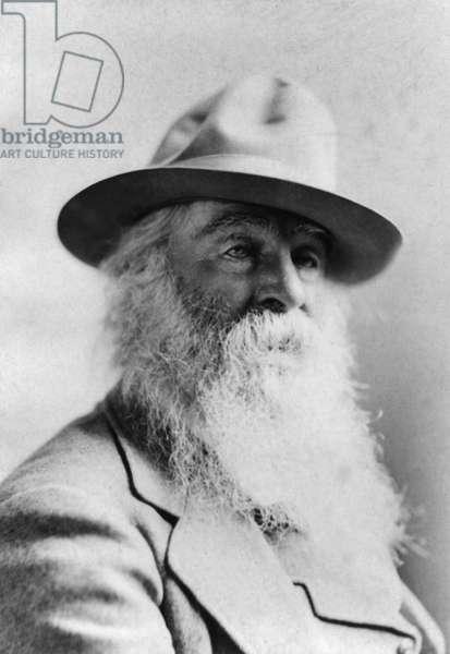 WALT WHITMAN (1819-1892) American poet. Photograph, 1879.