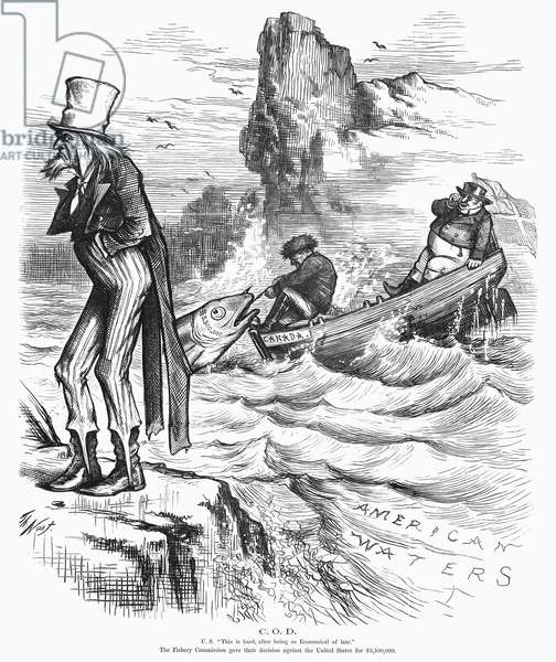 FISHING RIGHTS, 1877 Uncle Sam sulks as Canada and John Bull pull in a big award in the dispute about fishing rights. American cartoon by Thomas Nast, 1877.