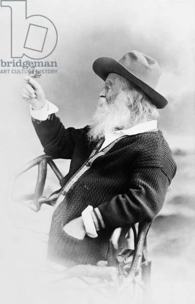 WALT WHITMAN (1819-1892) American poet. Photograph, 1873.