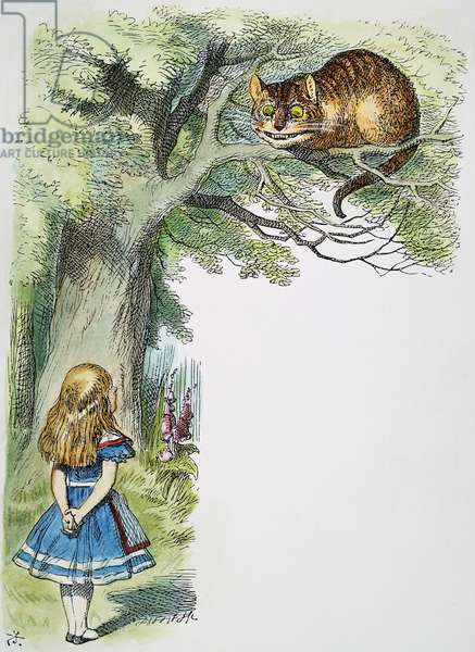 CARROLL: ALICE, 1865 Alice and the Cheshire Cat. Illustration by Sir John Tenniel from the first edition of Lewis Carroll's 'Alice's Adventures in Wonderland,' 1865.