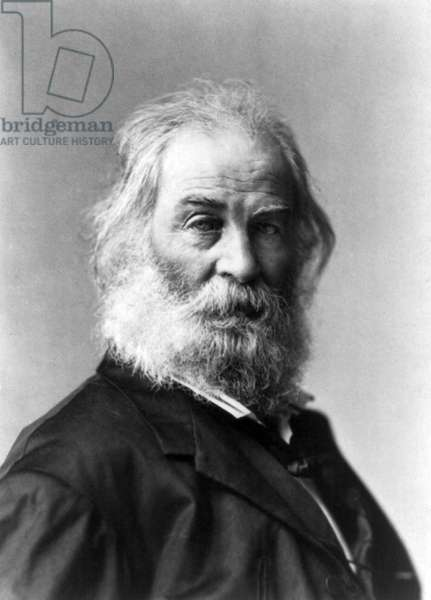 WALT WHITMAN (1819-1892) American poet. Photograph, 1872.
