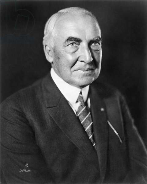 WARREN HARDING (1865-1923) 29th President of the United States. Photographed shortly before his death in 1923.