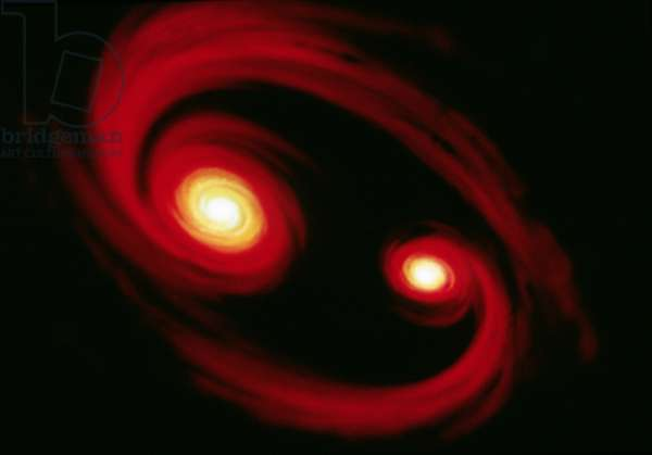 SPACE: BINARY STAR The formation of a binary star. Illustration by Dana Berry for NASA, c.1990.