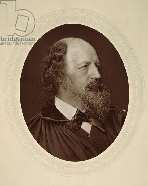 ALFRED TENNYSON (1809-1892). English poet. Photographed c.1880.