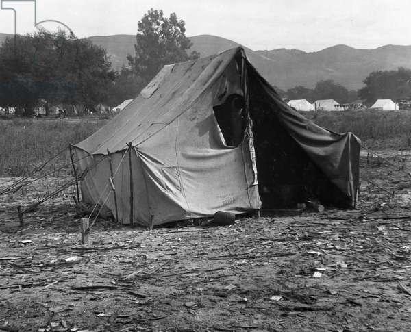 Squatter's tent in rural California, 1935 (b/w photo)