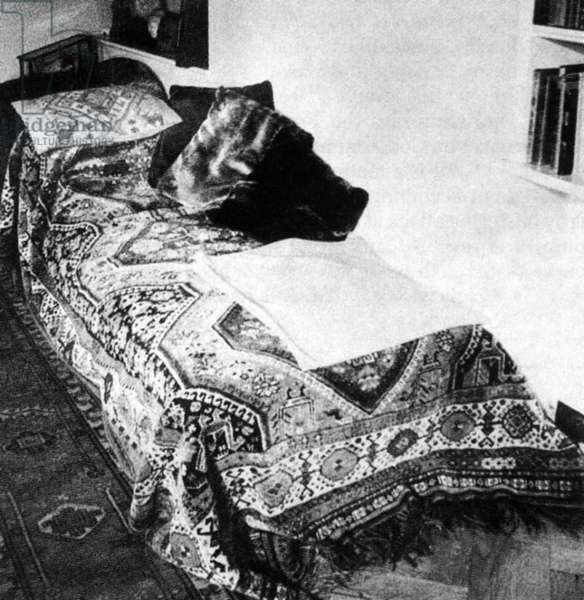 SIGMUND FREUD (1856-1939) Austrian neurologist. Dr. Freud's celebrated couch, on which his patients would recline during psychoanalysis.