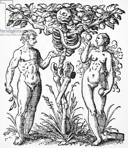 ADAM AND EVE The Tree of Knowledge & Death. Woodcut by Jost Amman, 1587.