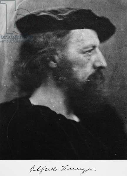 ALFRED TENNYSON (1809-1892) 1st Baron Tennyson. English poet. Photographed by Julia Margaret Cameron, 1866.