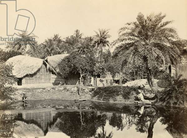 INDIA: CALCUTTA Native huts and palm trees in Calcutta, India. Photograph by Francis Frith, c.1865.
