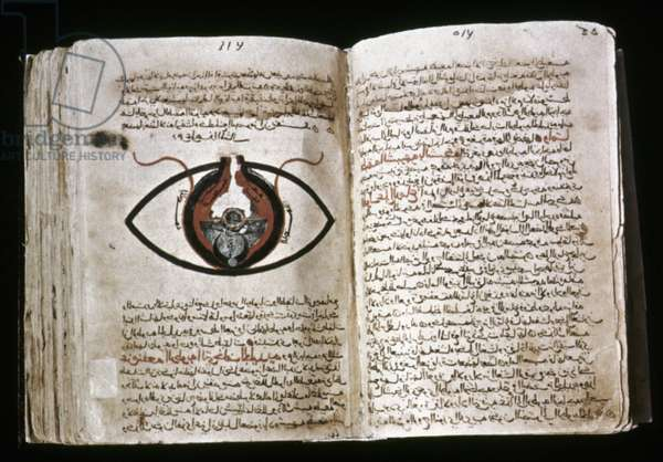 "The human eye from Hunayn ibn Ishaq's ""Book of the Ten Treatises of the Eye"", Cheshm Manuscript, c.1200"