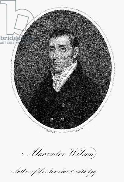 ALEXANDER WILSON (1766-1813) American (Scottish-born) ornithologist. Aquatint, American, 1814.