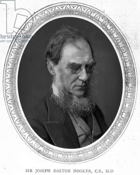 SIR J. D. HOOKER (1817-1911) English botanist. Photographed about 1881.
