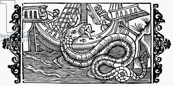 SEA MONSTER, 1555 One of the sea monsters once thought to dwell in the 'Sea of Darkness' to the south and west of Europe. Woodcut from Olaus Magnus' 'Historia de Gentibus Septentrionalibus,' 1555.