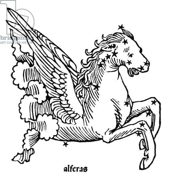 CONSTELLAION: PEGASUS Figuration of Pegasus (Al Feras). Woodcut from Gaius Julius Hyginus' 'Poeticon Astronomicon,' Venice, Italy, 1482.