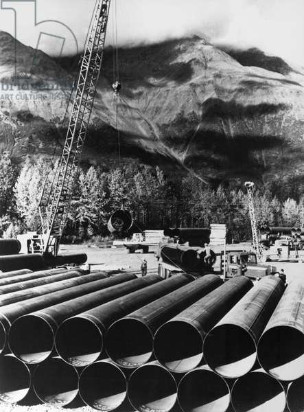 ALASKA: OIL PIPELINE, 1969 Part of the first shipment of 48-inch pipe to be used in the construction of the Trans-Alaska Pipeline, neatly stacked following its arrival at Valdez, Alaska, 24 October 1969.