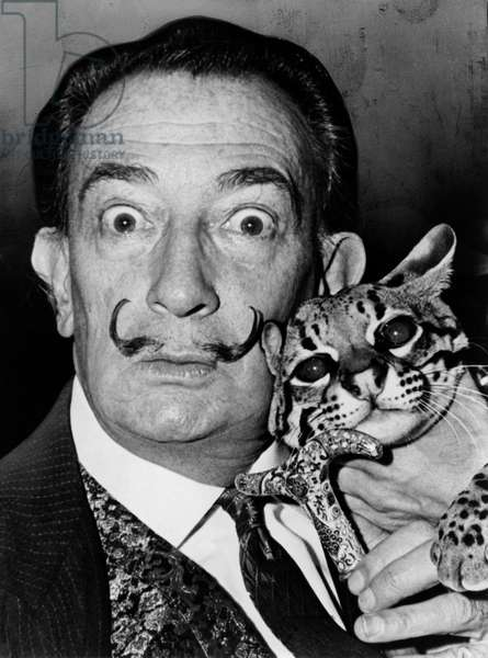 SALVADOR DALI (1904-1989) Spanish painter. Photographed with his pet ocelot, Babou. Photograph by Roger Higgins, 1965.