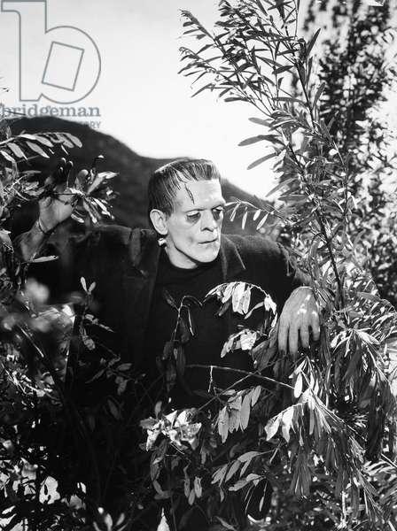 FRANKENSTEIN, 1931 Boris Karloff as the Monster in 'Frankenstein,' 1931.