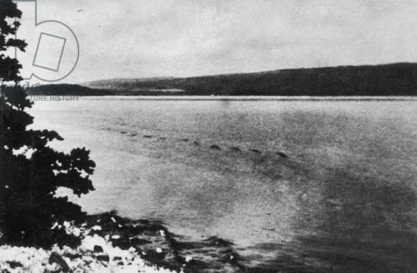 LOCH NESS MONSTER, 1934 Said to be the Loch Ness Monster at rest, showing its humps. Photographed by a member of Sir Edward Mountain's party in July 1934 at Brackla, Scotland. From a contemporary English newspaper.