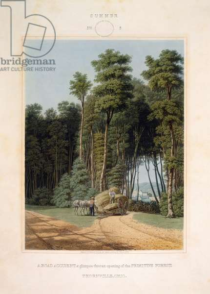 ROAD ACCIDENT, 1841 'A road accident, a glimpse thro' an opening of the primitive forest, Thornville, Ohio.' Aquatint by W.J. Bennett, 1841.