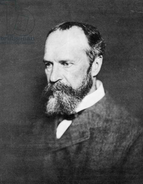 WILLIAM JAMES (1842-1910) American psychologist and philosopher. Photographed in the 1890s.
