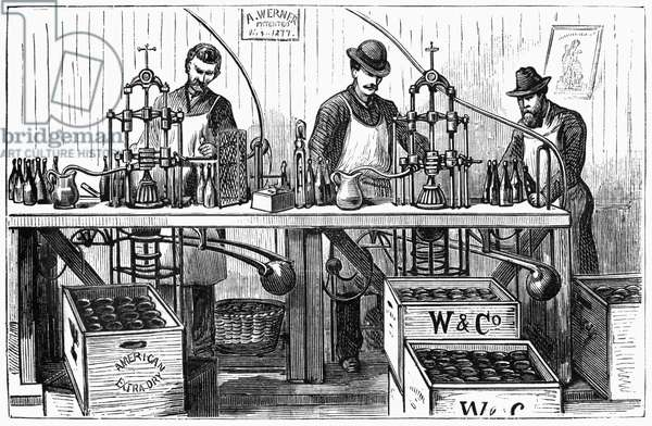 NEW YORK: WINE INDUSTRY Werner and Company employees bottling champagne in New York City. Engraving, American, 1878.
