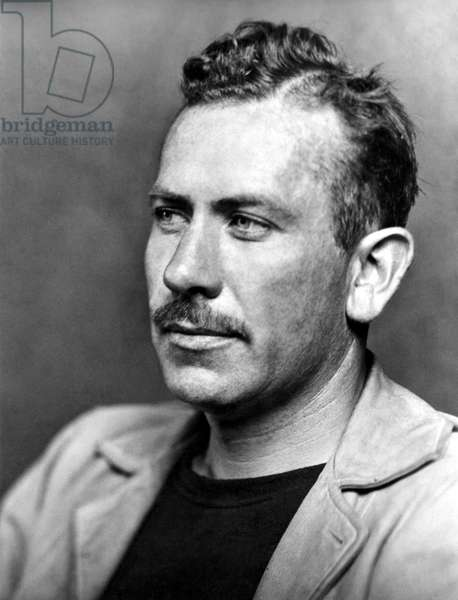JOHN STEINBECK (1902-1968) American writer, photographed in 1940.