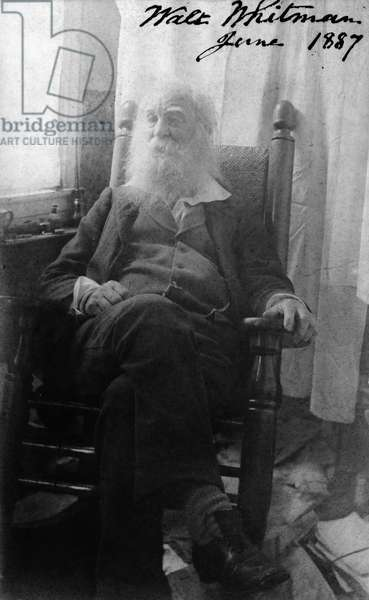 WALT WHITMAN (1819-1892) American poet. Photographed in June 1887.