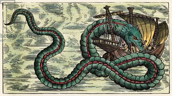 SEA SERPENT, 1555 Sea serpent in the 'Sea of darkness' to the south and west of Europe. Woodcut from Olaus Magnus' 'Historia de Gentibus Septentrionalibus', 1555.