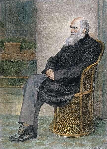 CHARLES DARWIN (1809-1882) English naturalist. At his home in Down, near Beckenham, Kent, England. Color engraving, 19th century.