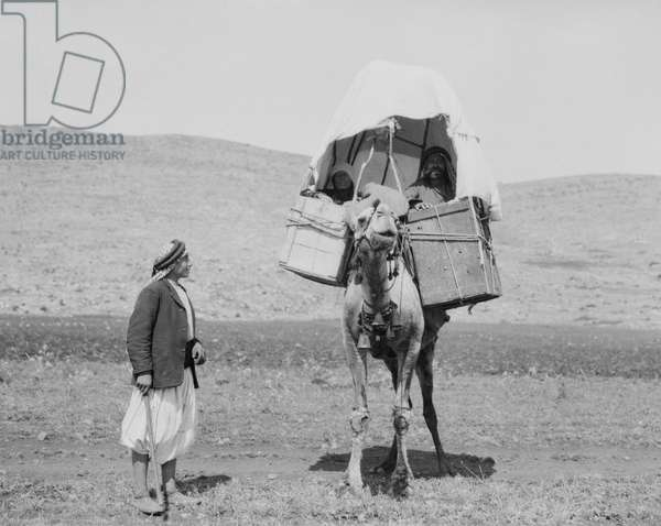 MIDDLE EASTERN TRAVELERS A group of men traveling by camel in the Middle East. Photograph, early 20th century.