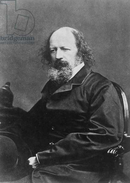 ALFRED TENNYSON (1809-1892). English Baron and poet. Photographed c.1870.