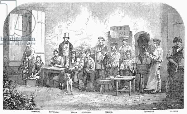 CHAMPAGNE PRODUCTION, 1855 The disgorging, corking and wrapping of bottles of champage at Pierry, France. Wood engraving, English, 1855.