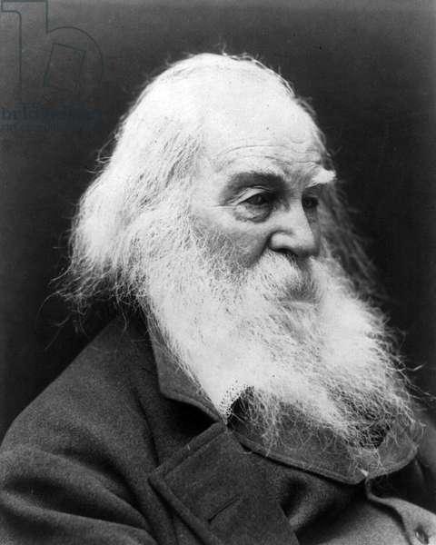 WALT WHITMAN (1819-1892) American poet. Photographed in c.1887.