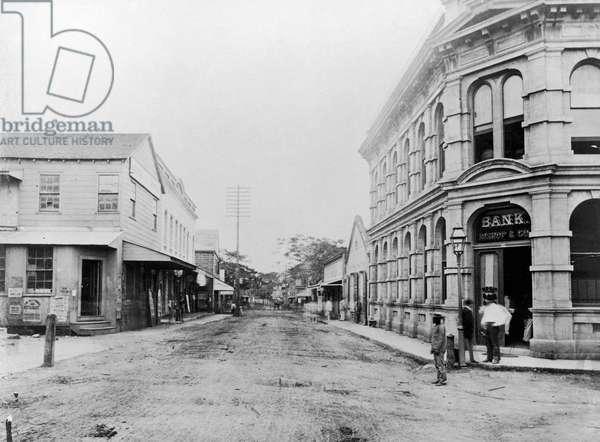 HAWAII: HONOLULU, c.1875 Road in Honolulu, Hawaii. Photograph, c.1875.