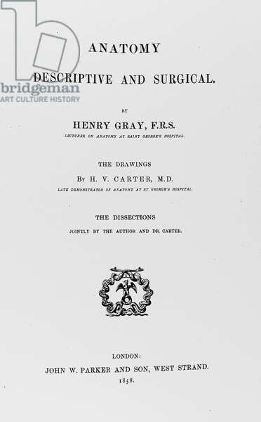 GRAY'S ANATOMY, 1858 Title page of Henry Gray's Anatomy, 1858.