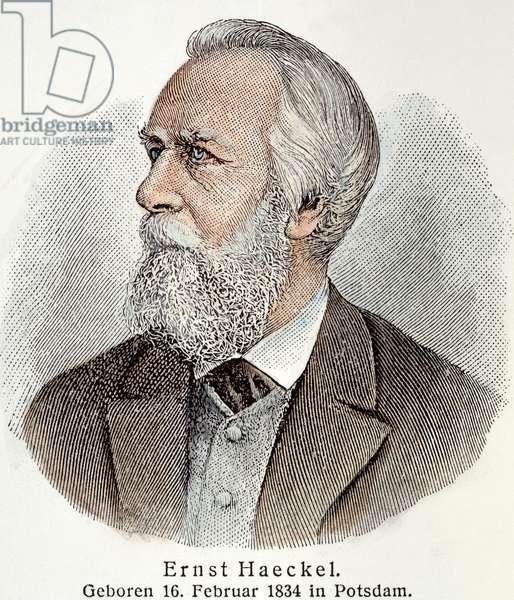 ERNST HAECKEL (1834-1919) German biologist and professor. Line engraving, 19th century.
