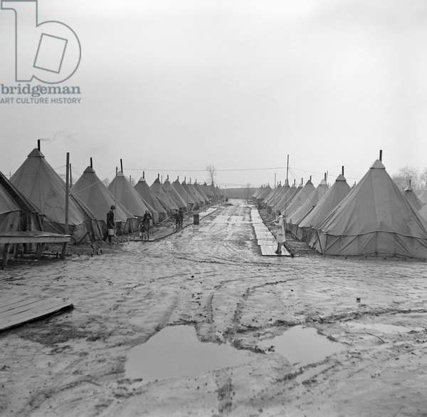 ILLINOIS: TENT CITY, 1937 Tent City for flood refugees near Shawneetown, Illinois. Photograph by Russell Lee, April 1937.